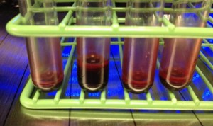 Blood Biospecimens